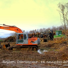 travaux-defrichage-center-parc-Roybon_16-11-2014_DSC03999